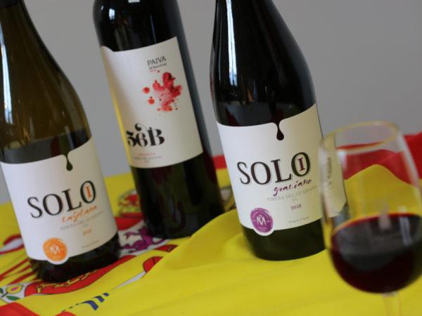 Spania Delice Vins AOP Ribera Del Guadiana 1